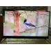 Телевизор BBK 50LEX8161UTS2C 4K Ultra HD на Android, 2 пульта, HDR, премиальная аудио система в Находке фото 9